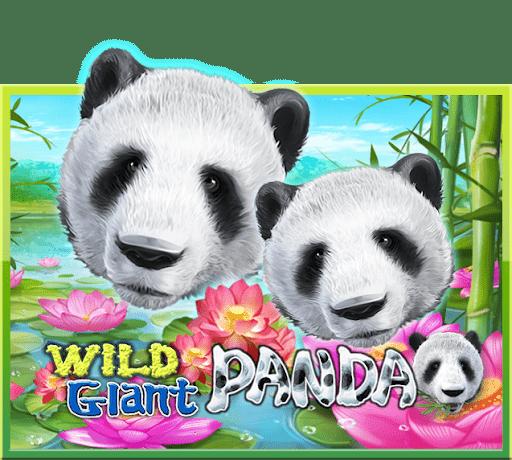 สล็อต JOKER Wild Giant Panda